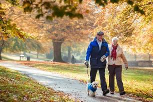 пожилые люди в парке